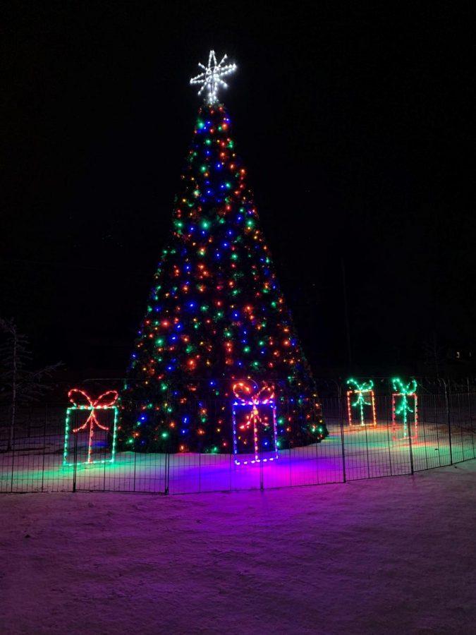 Lighting+of+the+Kearns+Christmas+Tree